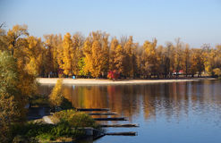 Autumn on the River. Autumn trees on the river bank Royalty Free Stock Photography