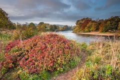 Autumn on River Tyne Stock Image