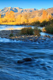 Autumn river in the Wasatch Mountains. Royalty Free Stock Photography