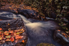 Autumn in the river. With a waterfall Stock Images