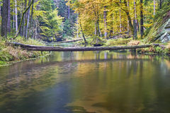 Autumn River With Trees Royalty Free Stock Photos