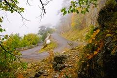 Autumn road. Asphalt road in autumn forest Stock Photo