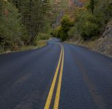 Autumn road. S-curve road in autumn Royalty Free Stock Photography