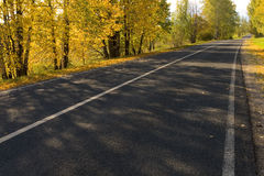 Autumn road. Shadows of trees falles on autumn road Stock Photography