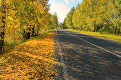 Autumn road. Shadows of trees falles on autumn road Royalty Free Stock Photos