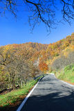 Autumn road. Road on the heights of Genoa in the autumn Stock Images