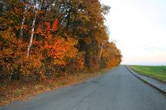 Autumn road. Beautiful autumn nature pictures, vivid landscapes Stock Image
