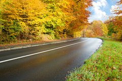 Autumn road. Autumn landscape with curvy road royalty free stock photo