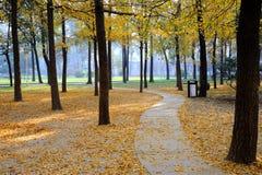 Free Autumn Road Royalty Free Stock Photo - 17488755