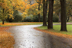 Autumn road-2. Autumn in old Park in Saint-Petersburg Royalty Free Stock Photography