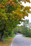 Autumn road Stock Images