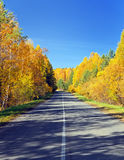 Autumn road. Stock Photos