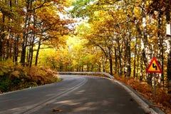 Autumn road Stock Images
