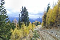 Autumn road. Forrest road in sinaia mountains Stock Photo
