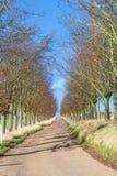 Kent countryside uk Royalty Free Stock Photos