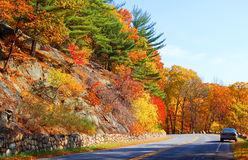 Autumn road. Autumn mountain view with road in bear mountain, new york Royalty Free Stock Images