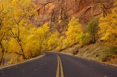 Autumn road 3. Autumn road in Zion National Park, Utah. Yellow foliage, red rocks, fallen leaves on asphalt Stock Photos