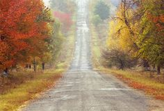Free Autumn Road Stock Image - 542321