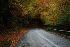 Autumn road. Beautiful road in the HERCULANE (Romania Stock Photo