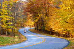 Autumn road with biker. A motorcycle (with a bit of motion blur from his speed) rides through an autumn wonderland Stock Photography