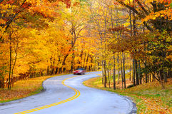 Autumn road with car. A car on curvy autumn forest road, with motion blur from its speed Stock Images