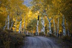 The Scenic Beauty of the Colorado Rocky Mountains. Autumn Road - Colorado Rocky Mountain Scenic Beauty Royalty Free Stock Photos