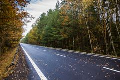 Autumn road. Autumn road in Czech republic Stock Photography