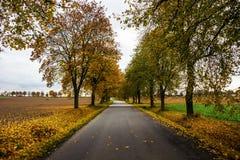 Autumn road in Czech Republic. Autumn road in South Bohemian region. Czech Republic stock photos