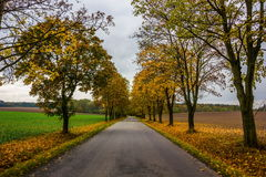 Autumn road in Czech Republic. Autumn road in South Bohemian region. Czech Republic royalty free stock image