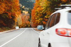 Autumn road. Among forest to the mountains. Fall travel, bad weather royalty free stock photo