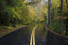 An autumn road in Great Smoky Mountains, Tennessee, USA royalty free stock photography