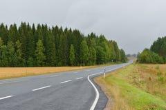 Autumn road in haze of rain Stock Photos