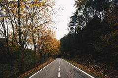 Autumn Road i Kanada fotografering för bildbyråer