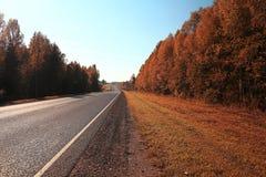Autumn road landscape Royalty Free Stock Photos