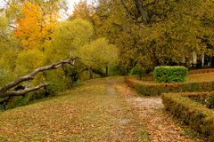 Autumn road in Latvia. Gloomy October and many coulored autumn Latvia royalty free stock image