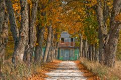 Autumn road leading to house Royalty Free Stock Photography