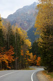 Autumn road in mountains Royalty Free Stock Image