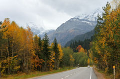 Autumn road in mountains Stock Images