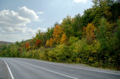 Autumn road in the mountains. Colorful forest Stock Image