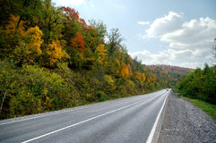 Autumn road in the mountains. Colorful forest Royalty Free Stock Images
