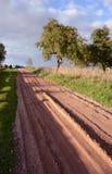 Autumn road near garden Royalty Free Stock Photos