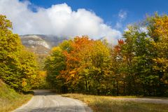 Free Autumn Road On A Sunny Day Stock Image - 157119841