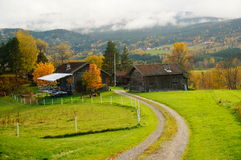 Autumn road over farm grassland in Telemark, Norway Royalty Free Stock Images
