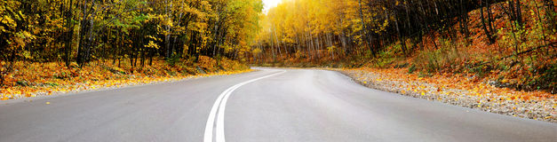Autumn road panorama Royalty Free Stock Photography