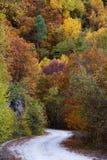 Autumn road Royalty Free Stock Photos