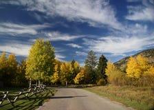 Autumn road and rail fence Stock Photos