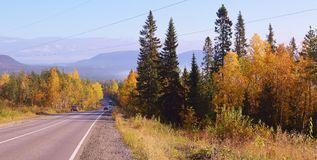 Autumn.Road.Russia.Kola peninsula.2017 year. The picture autumn road.Kola peninsula.Russia Royalty Free Stock Photo