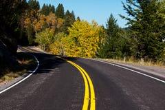 Autumn road Royalty Free Stock Image