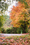 Autumn road and  small fountain. Stock Photo