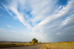 Autumn road in solar day Royalty Free Stock Photo